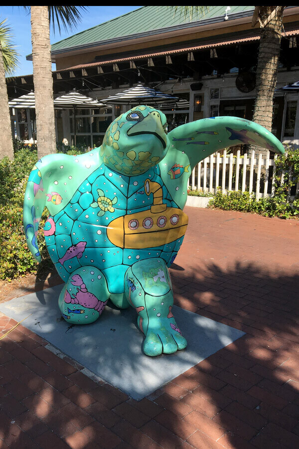 Turtle Atlantic Beach Florida