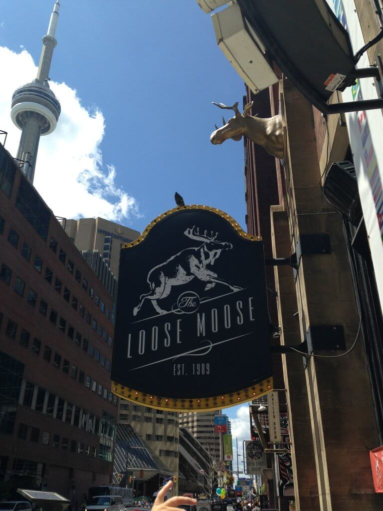 Single Day in Toronto - Loose Moose