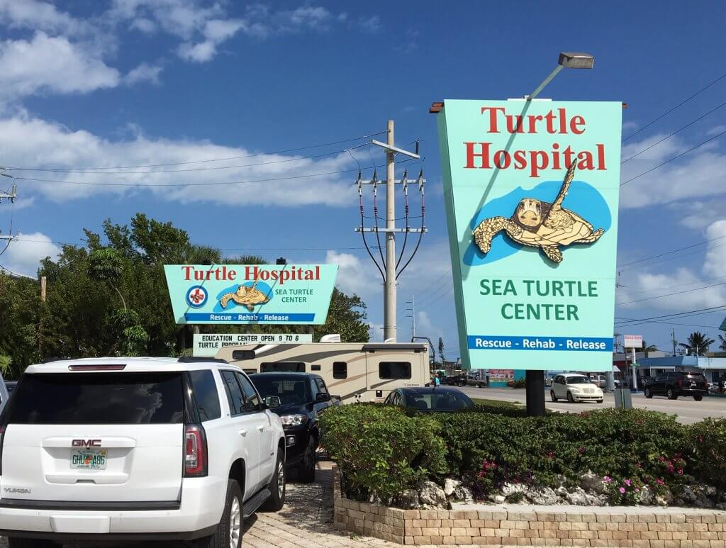 Florida Keys Turtle Hospital